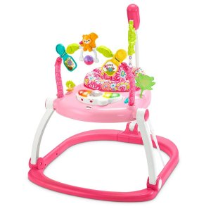 Fisher-Price Floral Confetti SpaceSaver Jumperoo | DKT02 | Fisher-Price