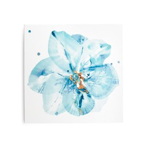 36x36 Pansy Canvas Wall Art - Wall Decor - T.J.Maxx