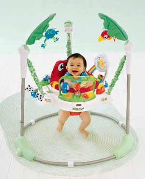 $50.05 Fisher-Price Rainforest Jumperoo