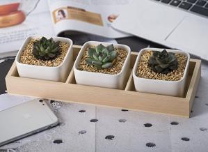 $6.99Opps 多肉植物方形小花盆 3个装 带竹制托盘