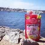 YumEarth 天然有机多种口味水果棒棒糖12.3 Ounce -50根