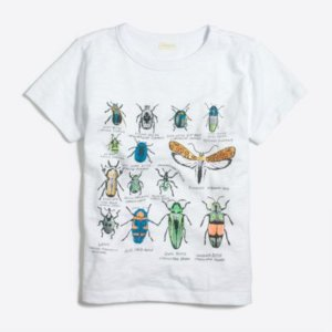 Boys' bugs storybook T-shirt : FactoryBoys Knits & T-Shirts | Factory