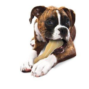 Nylabone NBC101P 牛骨造型狗狗啃咬玩具