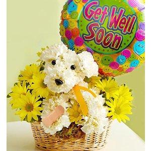 Sick As A Dog™ ,小狗造型的花篮,含气球