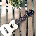 Mini Ukulele, Cute Hawaiian Small Guitar for Beginner Include Gig Bag