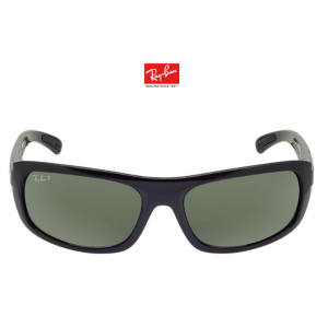 Ray-Ban RB4166 63, Blk, Grn Pol sunglasses