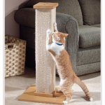 SmartCat Pioneer Pet SmartCat The Ultimate Scratching Post
