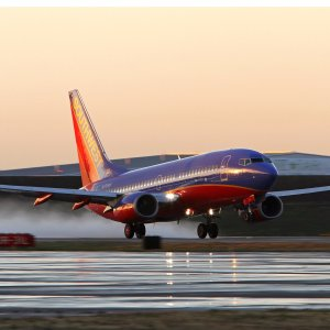 From $58Round Tripflight Sale from Oakland