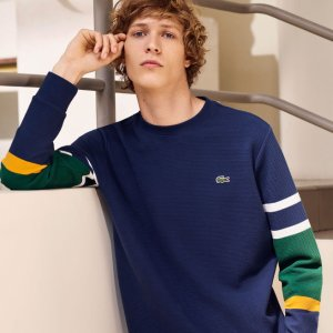 Men's Crew Neck Colorblock Ottoman Knit Sweater | LACOSTE