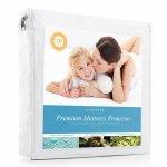 史低价!LinenSpa Premium 防水、防螨防过敏床垫保护套(Queen)