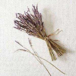 Lavender Bunch - Large | west elm