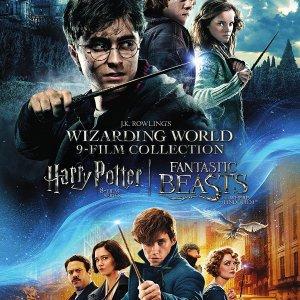 魔法世界电影合集:《哈利波特》系列  《神奇动物在哪里》