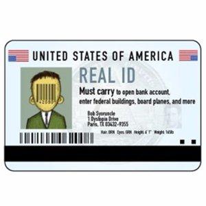 凭驾照明年能坐飞机吗Real ID 法案各州目前进展 每日旅行新鲜事