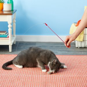 Go Cat Cat Catcher Teaser Wand with Mouse Cat Toy : Pet Feather Toys : Pet Supplies