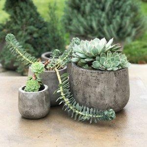 [Handmade] Eco Concrete Samai Planter (Vietnam) - Free Shipping On Orders Over $45 - Overstock.com - 16795880