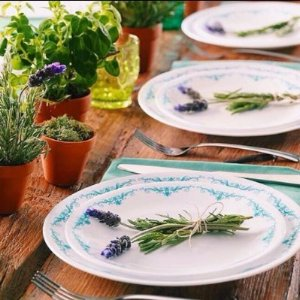 Free Gift with $50+Purchase & Free ShippingCorelle® Dinnerware @ World Kitchen