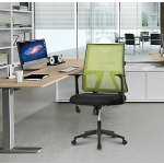 LANGRIA Mesh Office Task Chair Ergonomic 360 Degree Swivel Synchro Tilt Mechanism Mesh Upholstered Seat Pan, Max 285lbs
