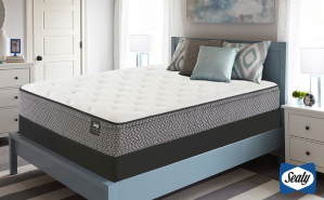 Sealy Essentials Cushion Firm or Plush Euro Top Mattress Set. Free White Glove Delivery. 10-Year Warranty.