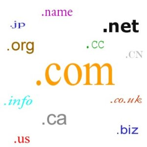 $4.99(was $11.99)Get Your Site On The Web with .com Domain