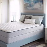 Sealy Brand Firm Fort Thomas Mattress