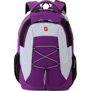 SwissGear Travel Gear SA5933 Laptop Backpack - eBags.com