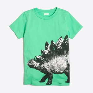 Boys' stegosaurus storybook T-shirt : FactoryBoys storybook t-shirts | Factory