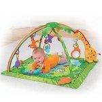 Fisher-Price 热带雨林婴儿健身毯
