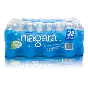 Niagara 32-Pack 16.9-fl oz Purified