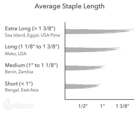 棉花种类、纤维长度说明