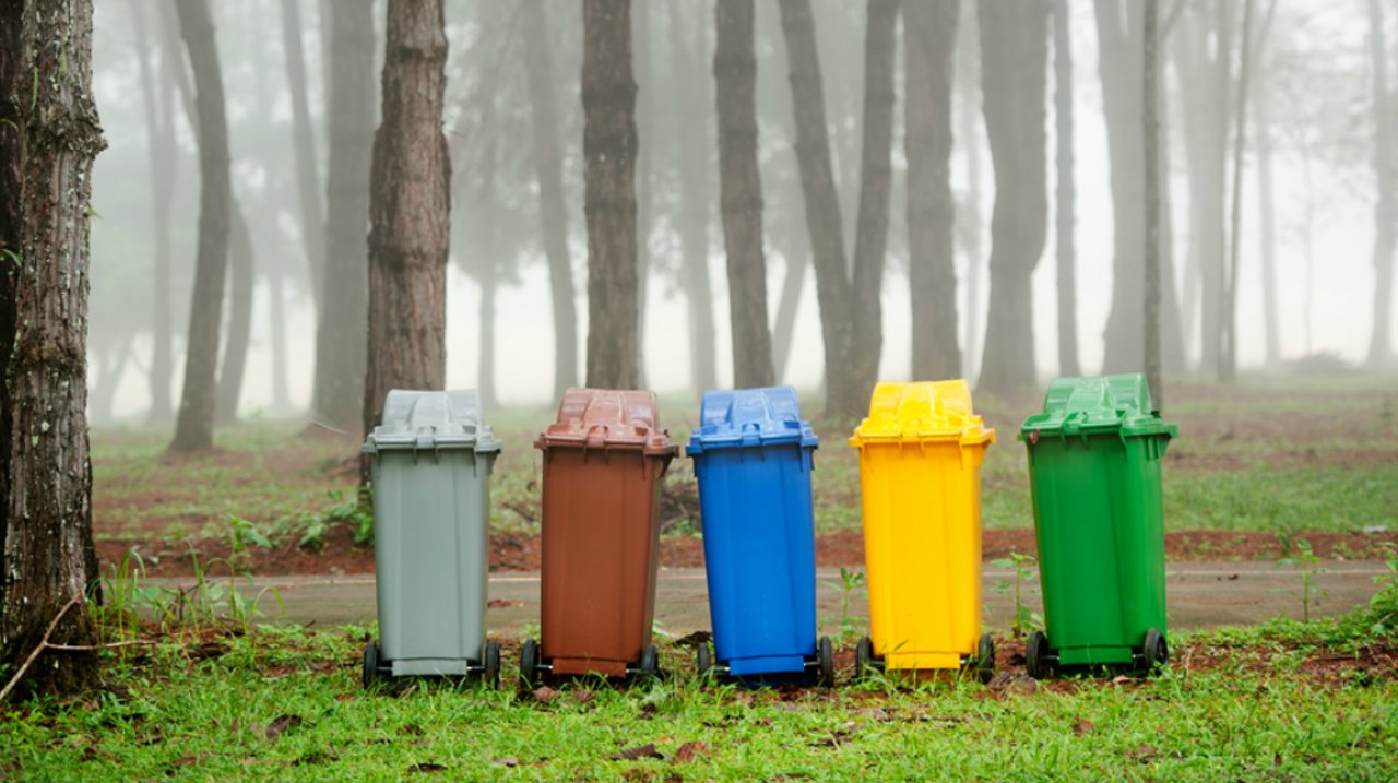 美国垃圾分类及回收科普,环境保护由我做起