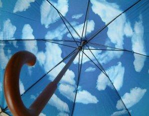$28.75(reg.$32.00) Sky Umbrella