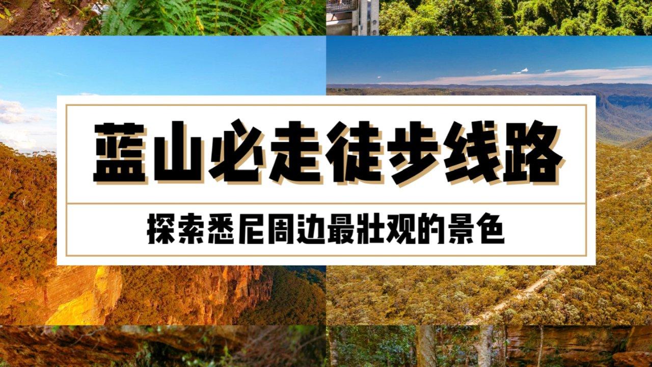 蓝山必走徒步路线!探索悉尼周边最壮观的景色~