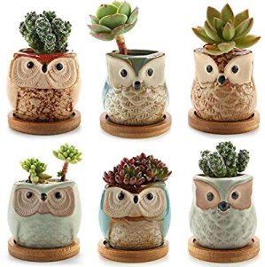 $13.54T4U Ceramic Succulent Planter Pots with Free Bamboo Saucers Mini Size Set of 6