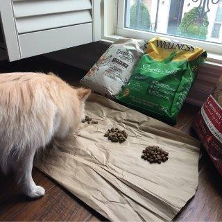 狗粮测评来的豪华晚餐