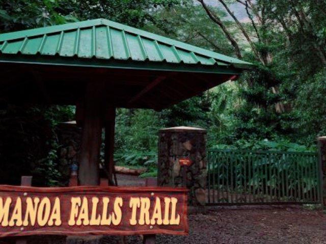 夏威夷风光—Manoa falls...