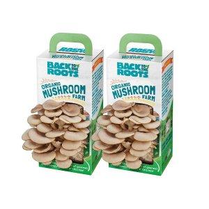 Back to the Roots 纯天然有机蘑菇农场 2盒