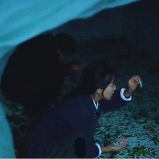 """清凉透体""""神锦衾"""", 古法新制的消暑珍品—小米有品每晚深睡天丝桑蚕丝夏被"""