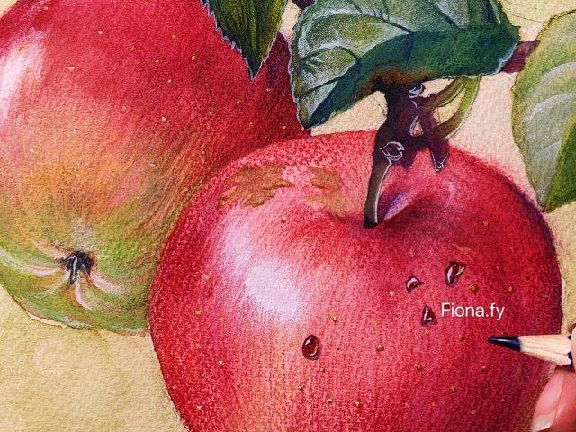 水彩插画教程|教你画苹果🍎硬核且枯燥