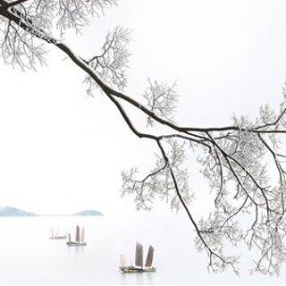 太湖雪(THXSILK)床品|打造高品质生活方式,让每一个梦都恬静自然