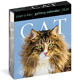 Amazon.com: Cat Page-A-Day Gallery Calendar 2020 (9781523506422): Workman Calendars: Books