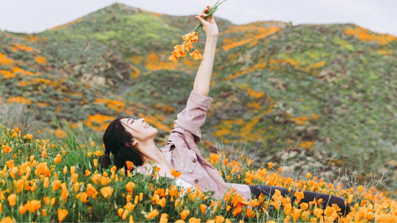 太美了!洛杉矶周末爬山赏花好去处 🌼
