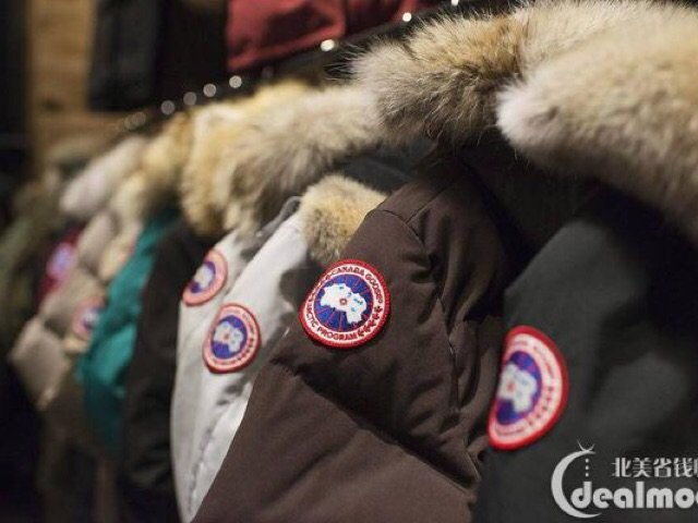冬季保暖神器| 说说我买过的加拿大鹅🇨🇦