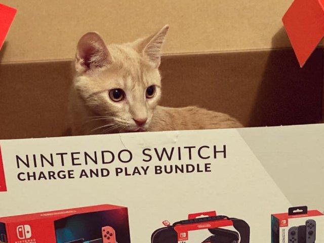 一个游戏小白的Switch初体验
