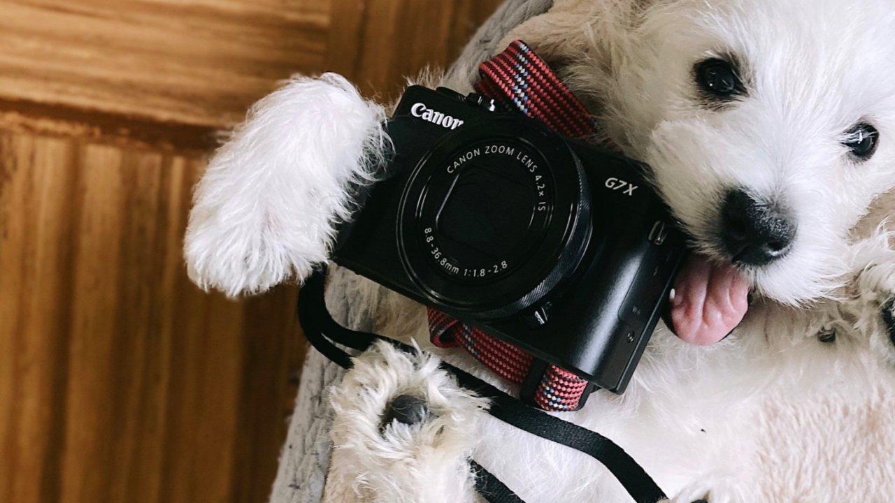 口袋里的拍照利器——G7X2众测报告