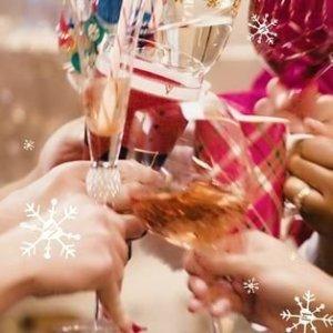 Jewel Silver Wine Glass   Pier 1 Imports