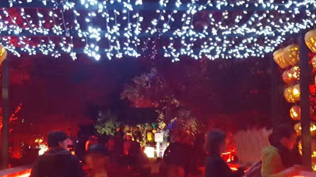 多伦多周边   Pumpkinferno大型南瓜灯节已经开始抢票!