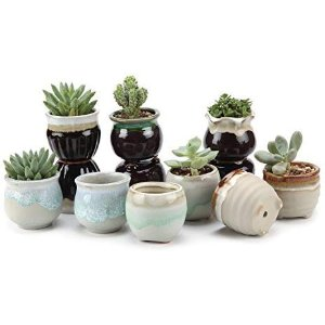 $19.99T4U Small Ceramic Succulent Planter Pots with Drainage Hole Set of 12