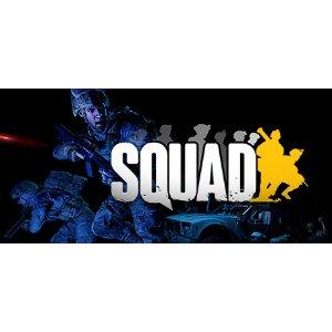 限时两天免费Squad 《战术小队》 游戏限时免费玩