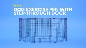 Frisco Dog Exercise Pen with Step-Through Door, Black, 24-in - Chewy.com