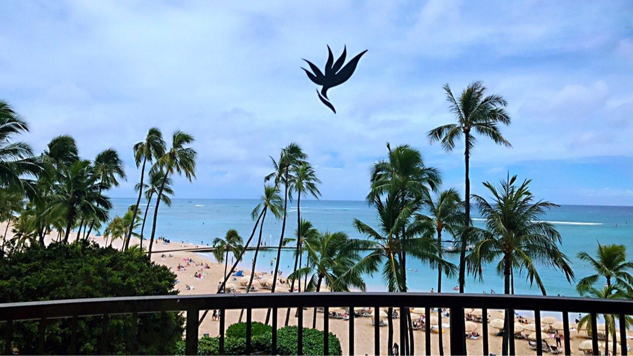 三个半月宝宝的夏威夷之旅-上